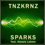 PRREC363A : TNZKRNZ - Sparks